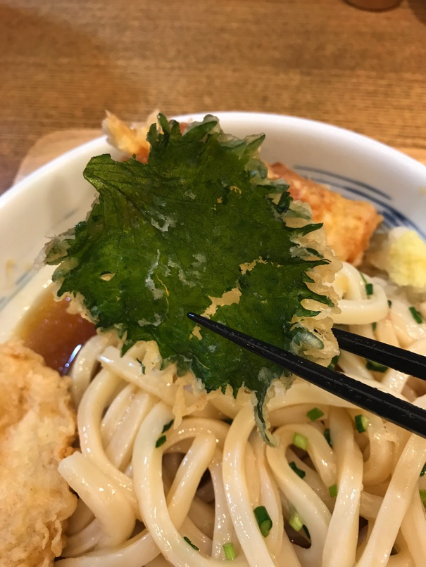 Shinari 29