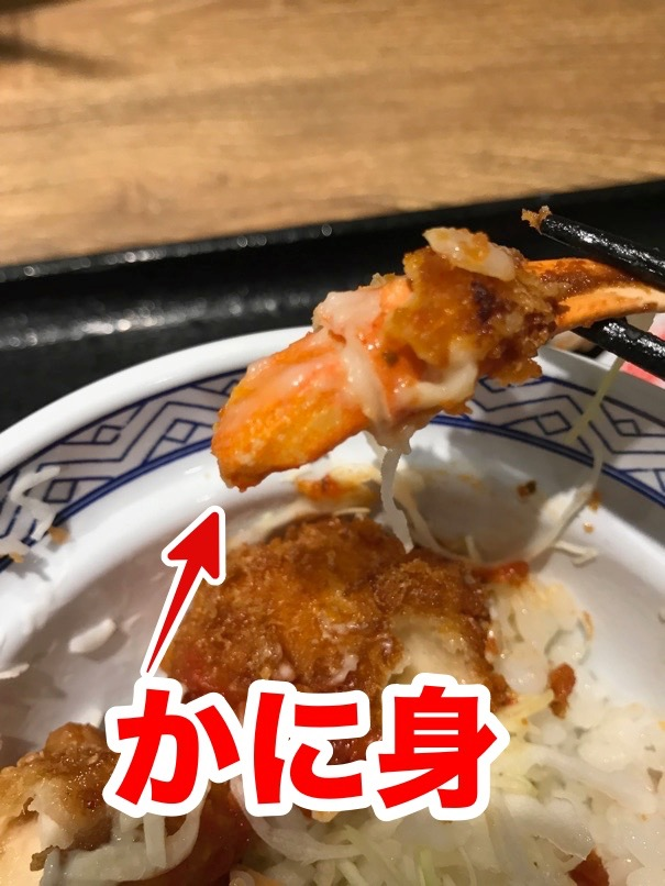Yoshinoya kanicoro 24