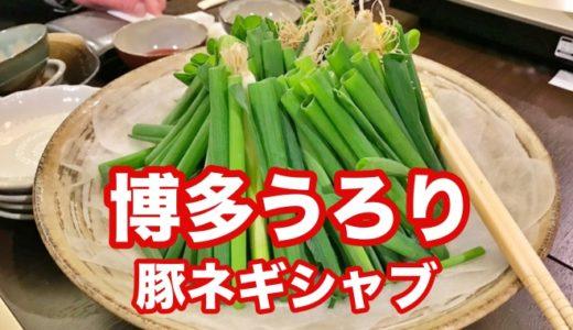 【博多うろり】女将コンビが創る野菜居酒屋 名物「豚ネギしゃぶ」「うろりサラダ」で新鮮野菜の美味さを知る!