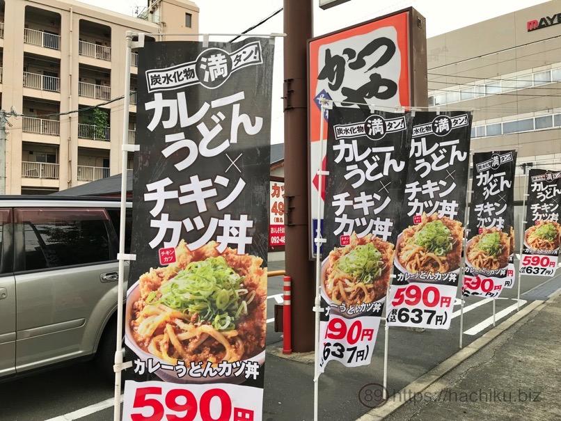 Katsuya curryudon chicken 1