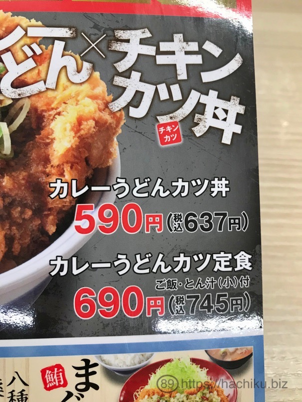Katsuya curryudon chicken 4
