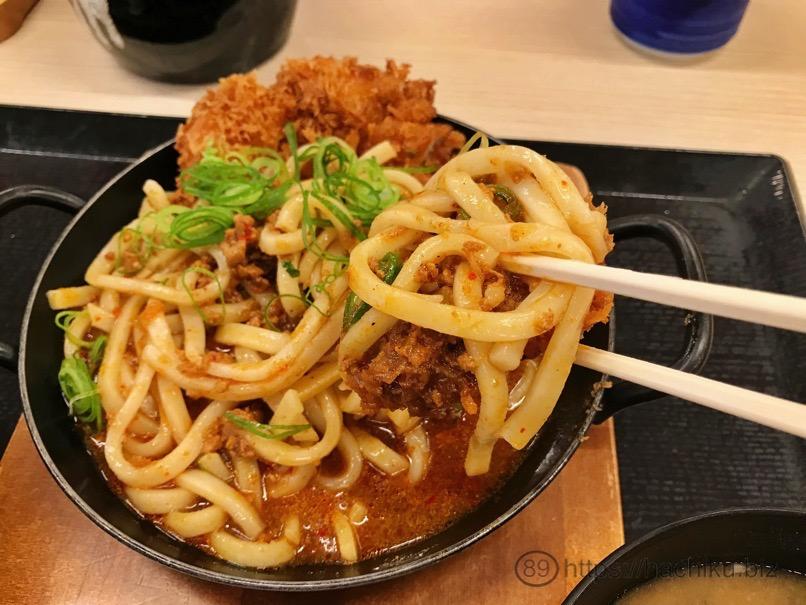 Katsuya curryudon chicken 7