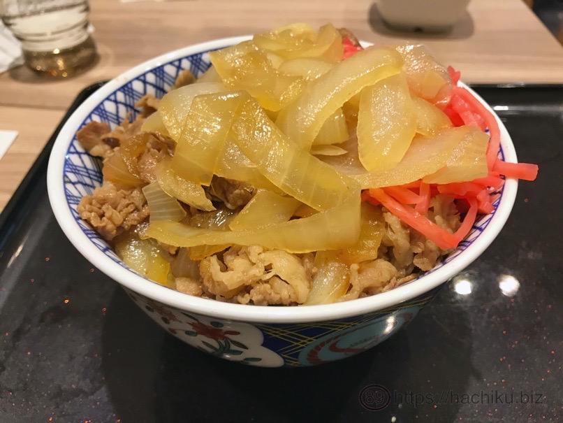 Yoshinoya negidaku 9