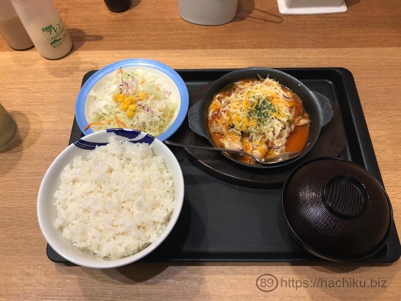 Matsuya catyatora 4