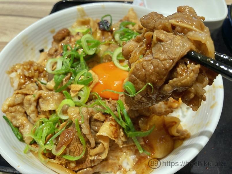 Yoshinoya sutatoku 14